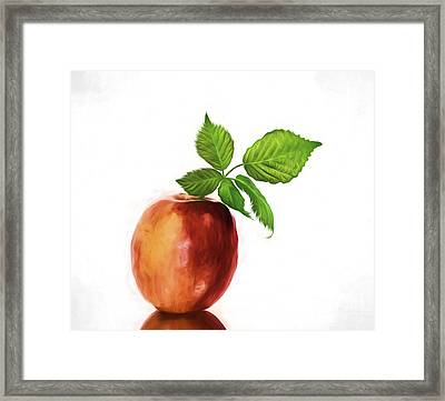 An Apple A Day Framed Print by Shirley Mangini