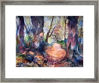 An April Path Framed Print by James Huntley