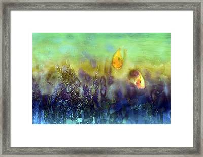 An Aquatic Adventure Framed Print