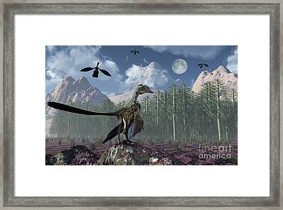 An Archaeopteryx Standing At The Edge Framed Print