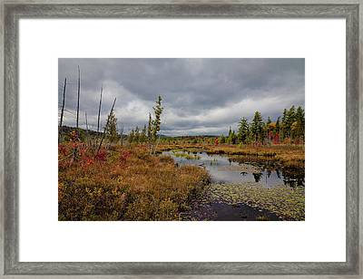 Framed Print featuring the photograph An Autumn Afternoon On Raquette Lake by David Patterson