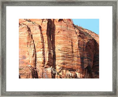 An Eagle Soars Framed Print by Will Borden