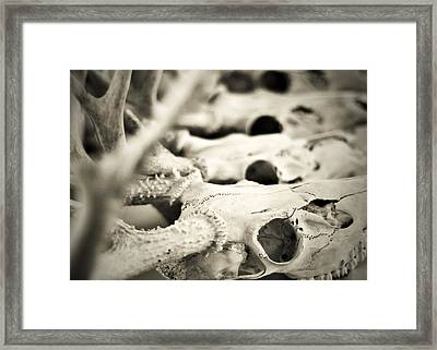 An Echo Of Mortality Framed Print