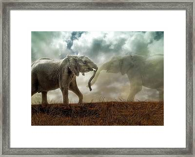 Framed Print featuring the digital art An Elephant Never Forgets by Nicole Wilde