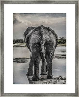 An Elephant's Tail Framed Print