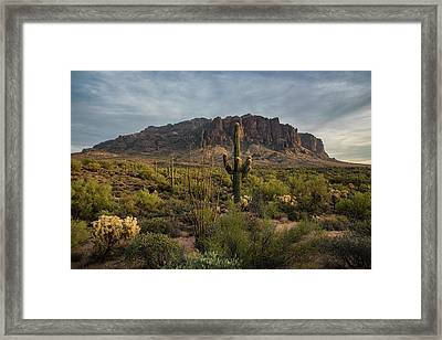 An Evening Stroll In The Supes  Framed Print