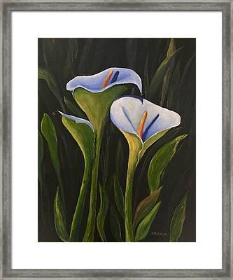 An Evening With Calla Framed Print