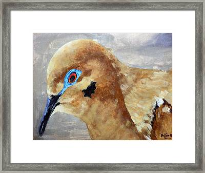 An Eye For Art Framed Print
