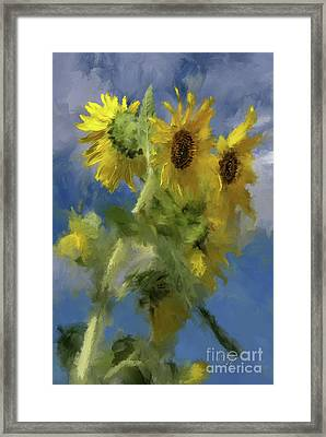 Framed Print featuring the photograph An Impression Of Sunflowers In The Sun by Lois Bryan