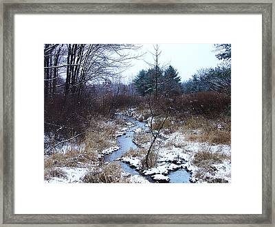 An Intimate Motif In Palenville Framed Print by Terrance DePietro