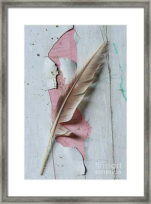 An Old Door And Feather Framed Print by Masako Metz