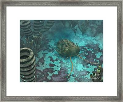 An Olenoides Trilobite Scurries Framed Print by Walter Myers