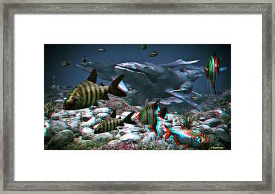 Anaglyph Whales Framed Print by Ramon Martinez