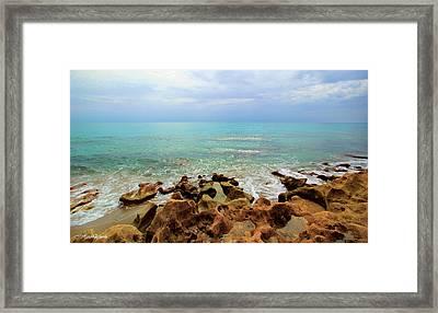 Anastasia Limestone Shoreline Jupiter Island Florida Framed Print by Michelle Wiarda