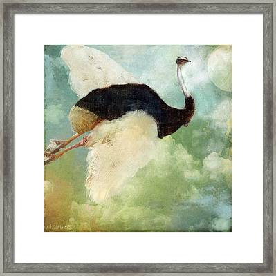 Anastasia's Ostrich Framed Print by Mindy Sommers