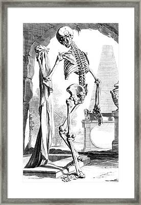 Anatomia Humani Corporis, Table 88, 1690 Framed Print by Science Source