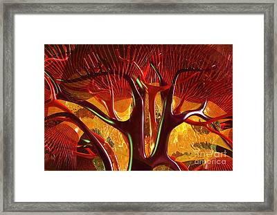 Anatomy Abstract #1 Kidney Framed Print by Russell Kightley