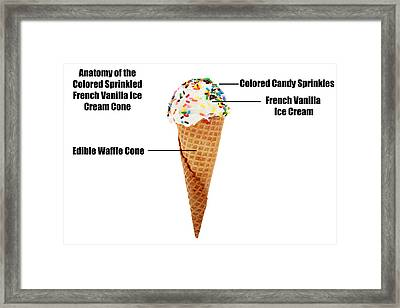 Anatomy Of A Vanilla Ice Cream Cone With Colored Sprinkles  Framed Print