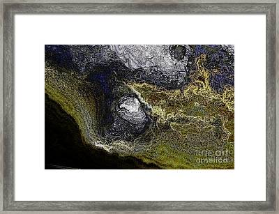 Anatomy Of A Vision Framed Print by Clayton Bruster