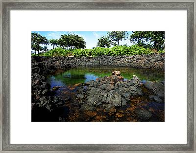 Framed Print featuring the photograph Anchialine Pond by Anthony Jones