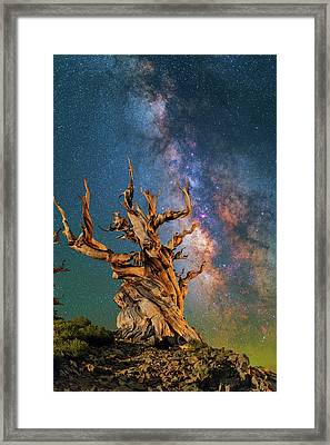 Ancient Beauty Framed Print