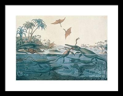 1850 Framed Prints