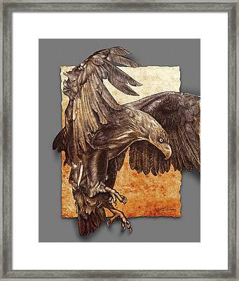 Ancient  Eagle Framed Print by Jim Turner