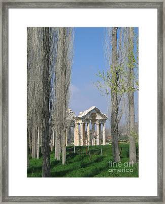 Ancient Gate Through The Trees Framed Print by Clay Cofer