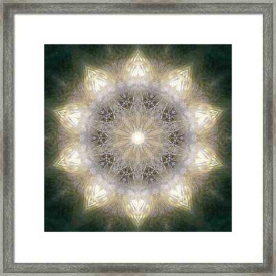 Ancient Light X Framed Print by Lisa Lipsett