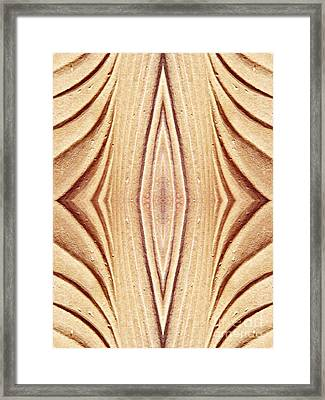 Ancient Lines 12 Framed Print by Sarah Loft