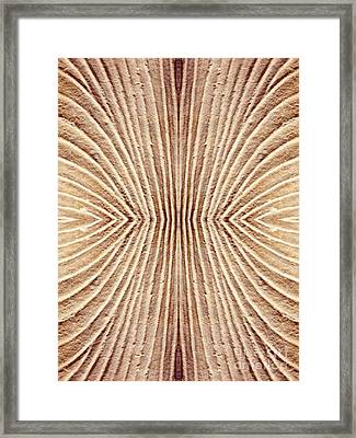 Ancient Lines 3 Framed Print by Sarah Loft