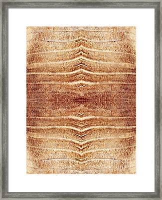 Ancient Lines 6 Framed Print by Sarah Loft