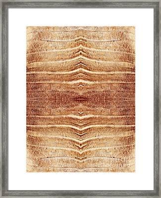 Ancient Lines 6 Framed Print