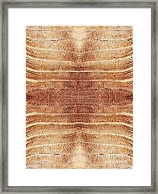 Ancient Lines 8 Framed Print by Sarah Loft