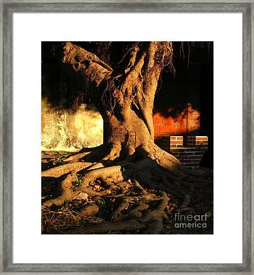 Ancient Tree In A Chinese Courtyard Framed Print by Yali Shi