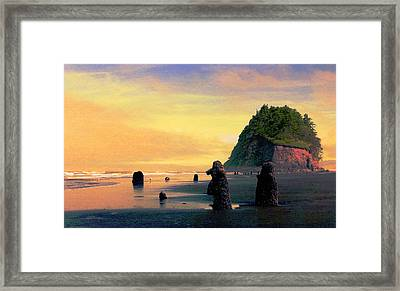 Ancient Trees At Neskowin Beach Framed Print