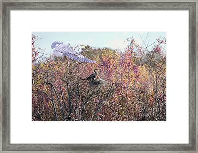 And Baby Makes Three Framed Print by Judy Kay