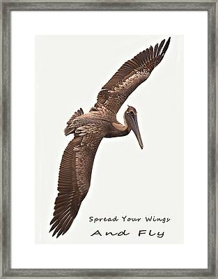 And Fly Framed Print by Laura Ragland