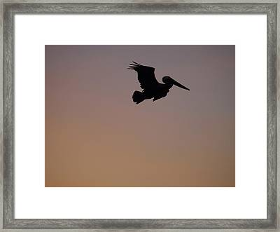 And I Can Reach Higher Framed Print
