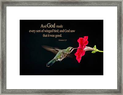 And It Was Good Framed Print
