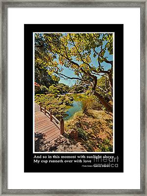 And So In This Moment With Sunlight Above Framed Print