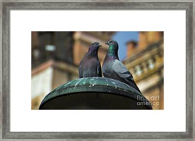 And Then She Said... Framed Print by Al Bourassa