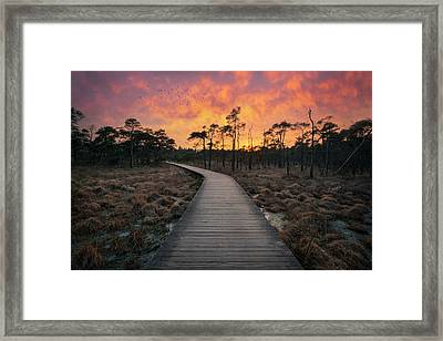 And Then The Magic Appears Framed Print