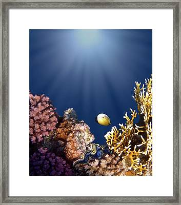 And Then There Was Light Framed Print