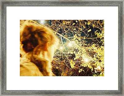 Framed Print featuring the photograph And Then There Was Sight by Angelique Bowman