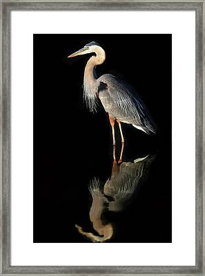 Framed Print featuring the photograph And Then There Were Two by Donna Kennedy