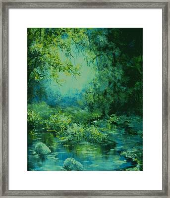 And Time Stood Still Framed Print by Mary Wolf