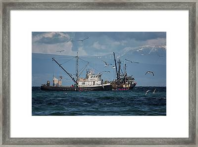 Framed Print featuring the photograph Kornat And Western Investor by Randy Hall