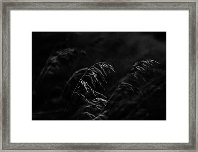 And Yet More Darkness Framed Print