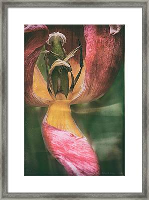 And You Are Who Framed Print